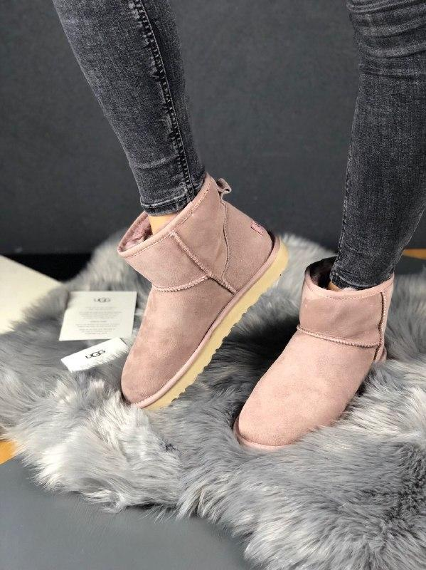 Шикарные женские зимние сапоги ботинки ugg classic mini ii boo...