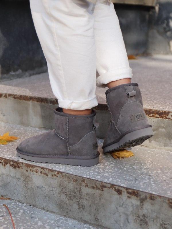 Шикарные женские зимние сапоги угги ugg mini ii grey с натурал... - Фото 6