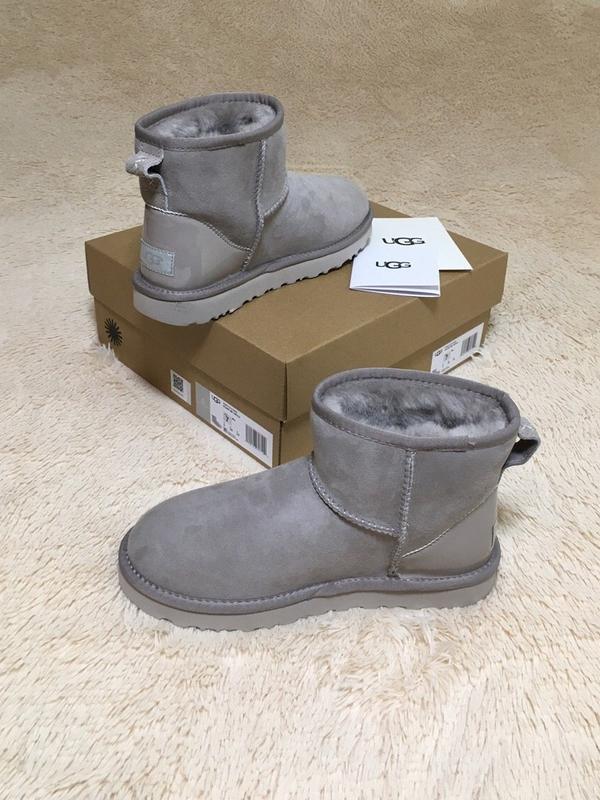 Шикарные женские зимние сапоги угги ugg classic ii mini gray с...