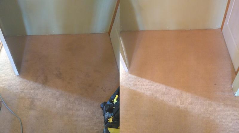 Химчистка ковровых покрытий на дому и в офисе - Фото 2