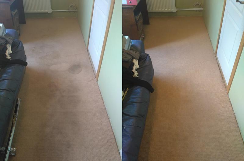 Химчистка ковровых покрытий на дому и в офисе - Фото 3