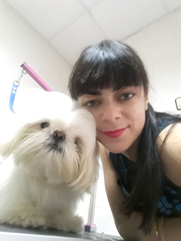 Стрижка собак и кошек в ветеринарной клинике, вызов на дом - Фото 14