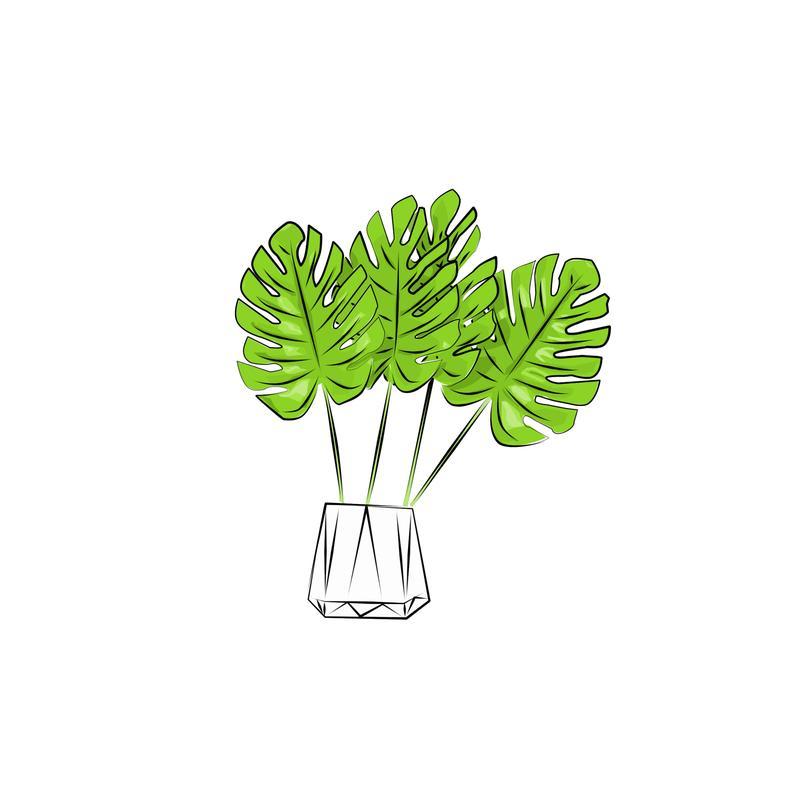 Рисую ботанические иллюстрации