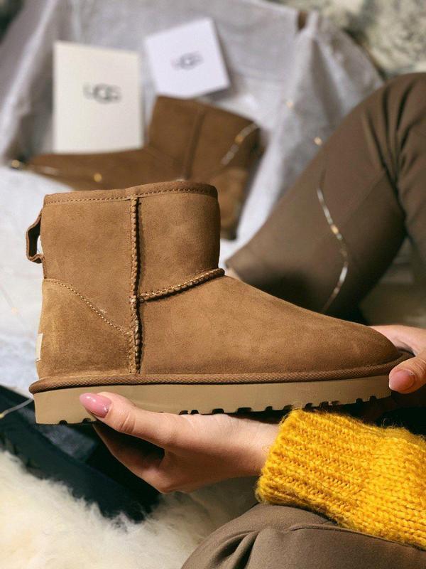 Ugg classic mini brown! женские замшевые зимние угги/ сапоги/ ...
