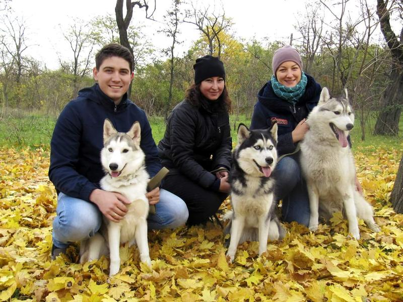 Дрессировка собак в Одессе - Фото 3