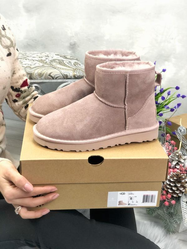 Ugg classic mini pink натуральные женские зимние угги сапоги р...