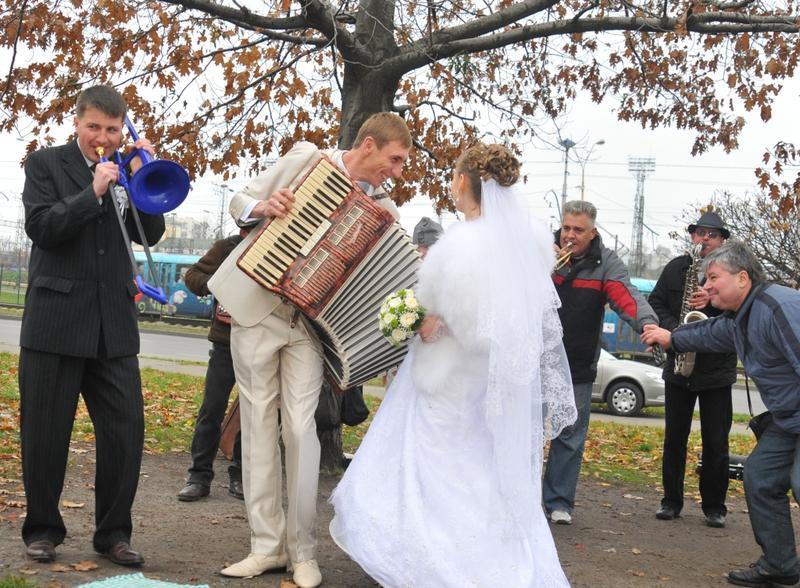 Ведущий на свадьбу, тамада на свадьбу, музыкальное сопровождение
