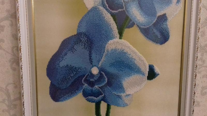 Картина вышита бисером синие орхидеи голубые цветы орхидея в рамк - Фото 4