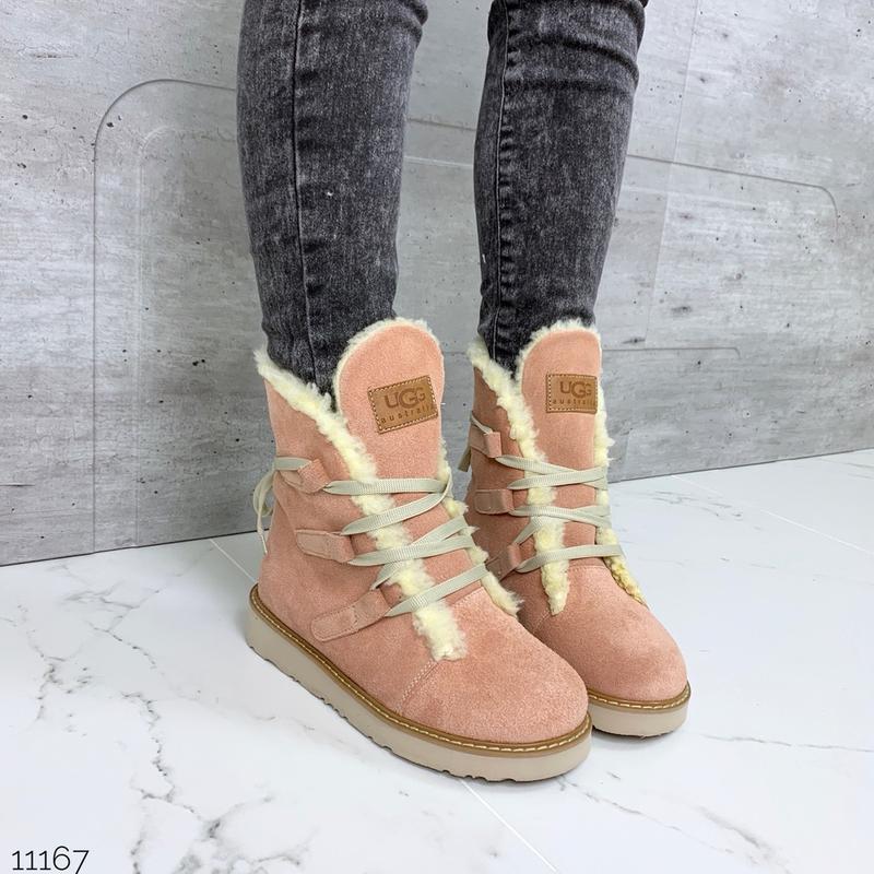❤ женские пудровые розовые зимние  замшевые ботинки ugg полуса...
