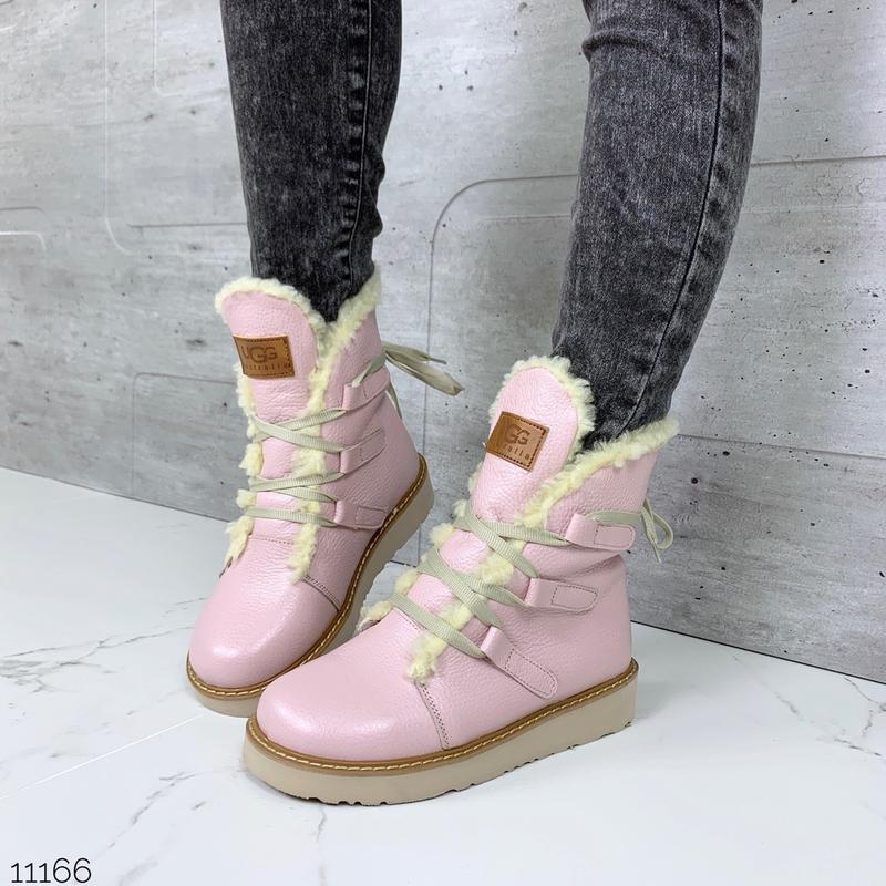 ❤ женские розовые пудровые зимние кожаные ботинки ugg полусапо...
