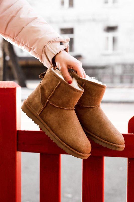 Ugg mini classic! женские замшевые зимние угги/ сапоги/ ботинк...