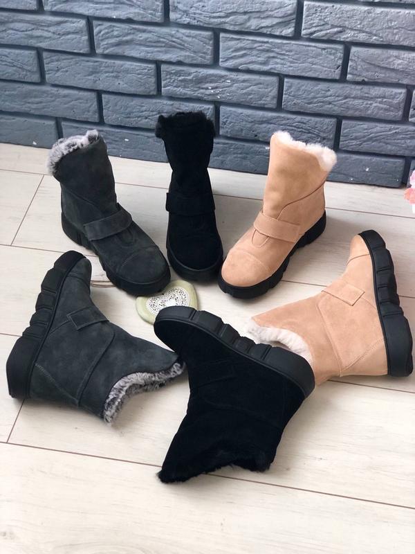 Lux обувь! стильные натуральные замшевые сапоги угги