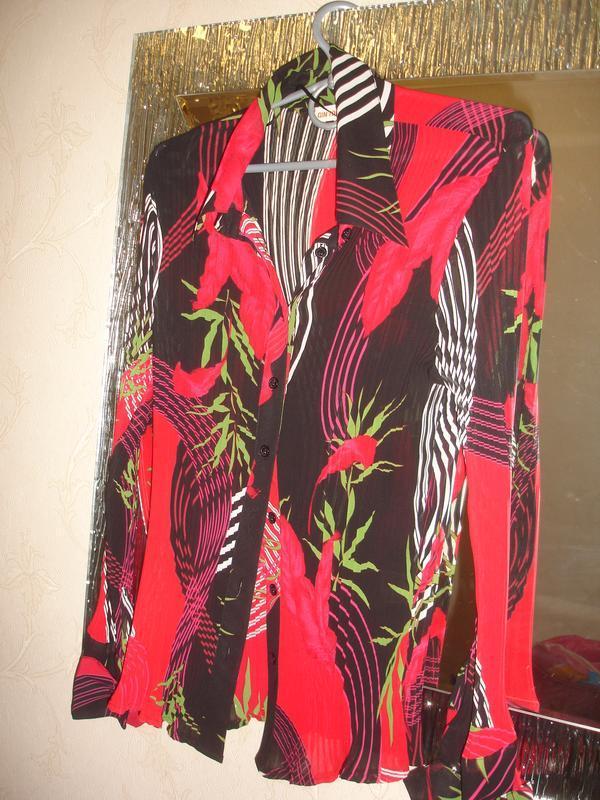 Блузка шифон гофрированный размер 46-48 / 12 блуза кофточка че...