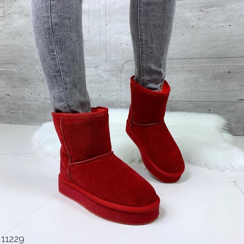 ❤ женские красные зимние замшевые угги ugg ботинки сапоги полу...