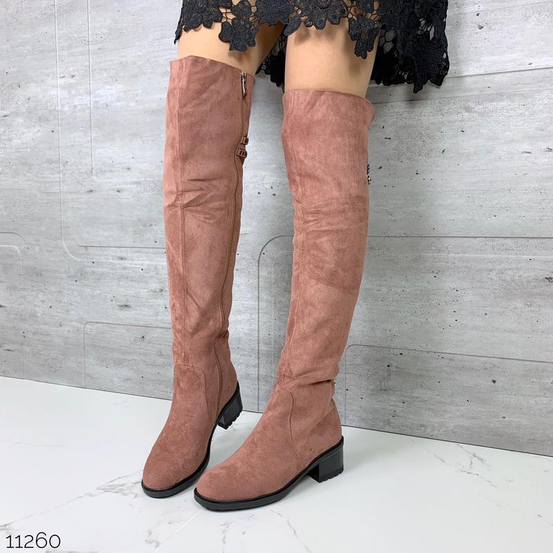 Стильные зимние пудровые ботфорты на низком каблуке