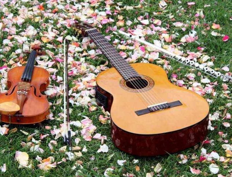 Обучаю игре на скрипке, гитаре, фортепиано. - Фото 2