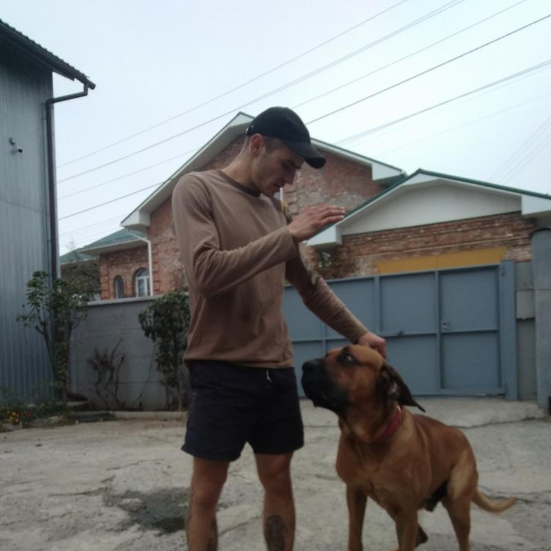 Предоставляю услуги активного выгула собак всех пород