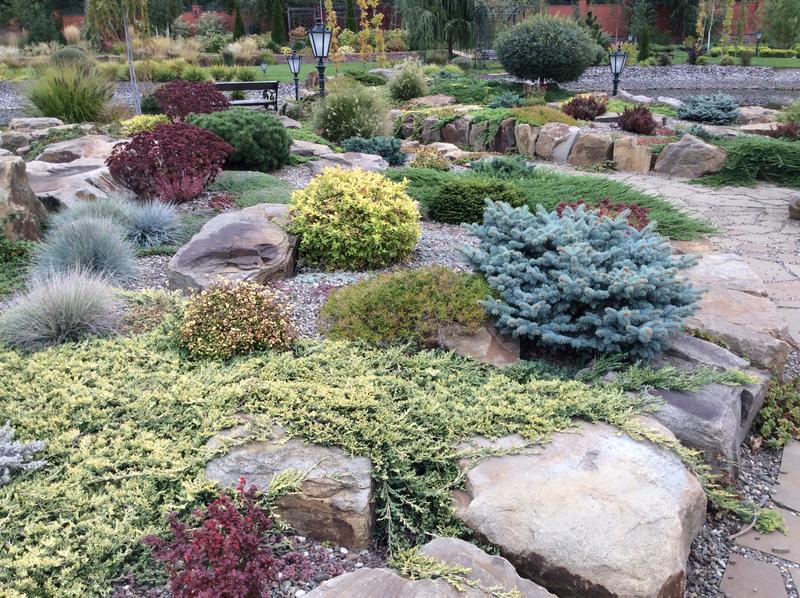 Каменистые сады. Отсыпка.