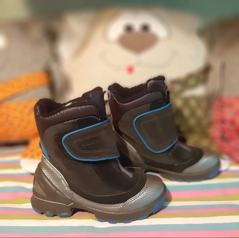 Зимние ботинки biom hike 29 р