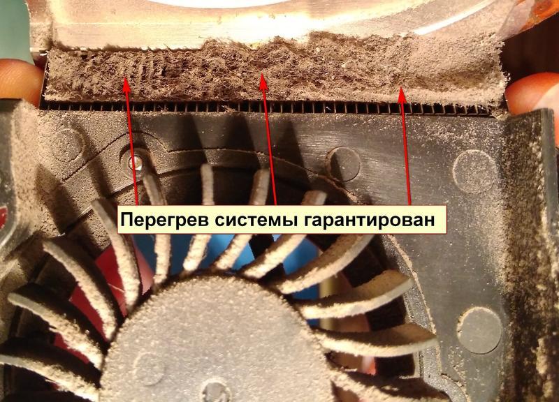 Чистка ноутбуков от пыли - Фото 3