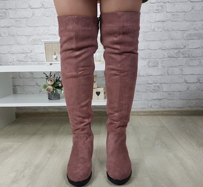 Новые шикарные женские зимние пудровые сапоги ботфорты