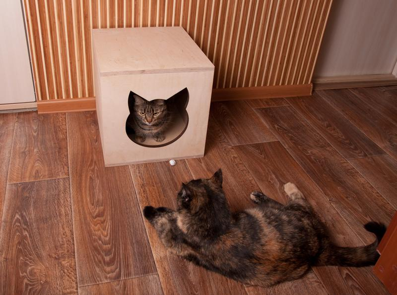 Домик для кошки, котодомик из фанеры, Харьков, доставка - Фото 2