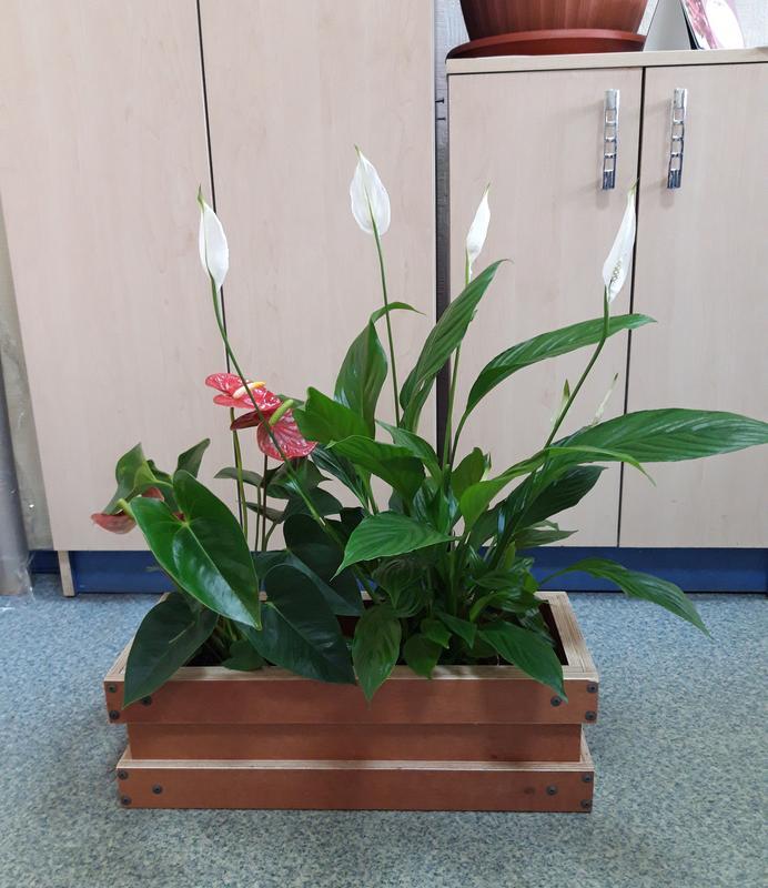 Ящики для цветов (вазон, горшок, кашпо) из ламинированной фанеры - Фото 5