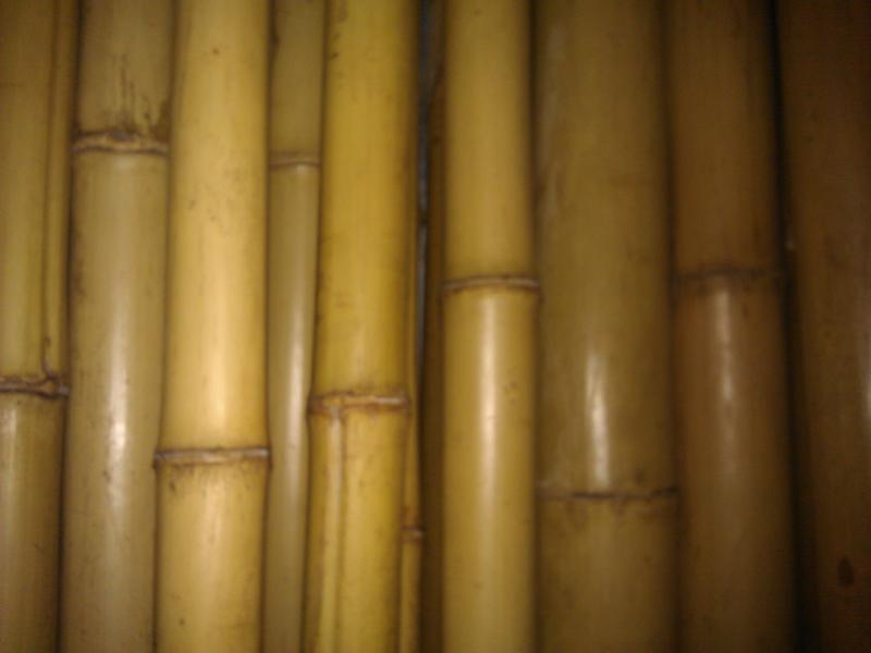 Бамбук. Шест L= 3м, d=20-35мм. ЦЕНА за 3м. Брус.