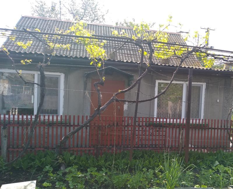 Дом. Аренда - Фото 3