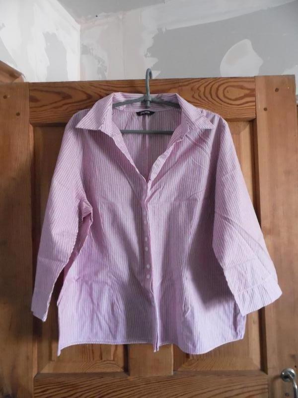 Блуза в рисочку