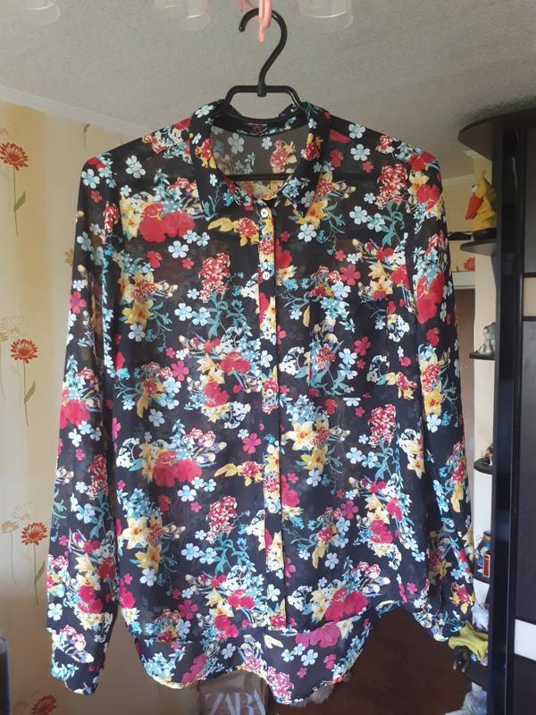 Рубашка, блузка с длинным рукавом