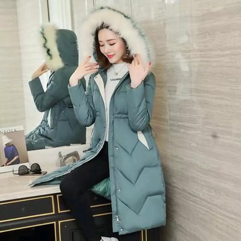 Женская пальто Парка