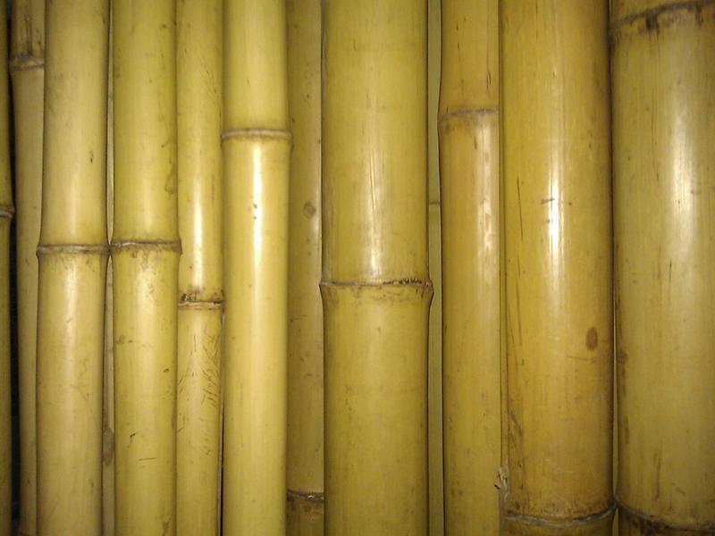Бамбук Цена за три метра. Диаметр 30-40мм Опора. Брус. Балка