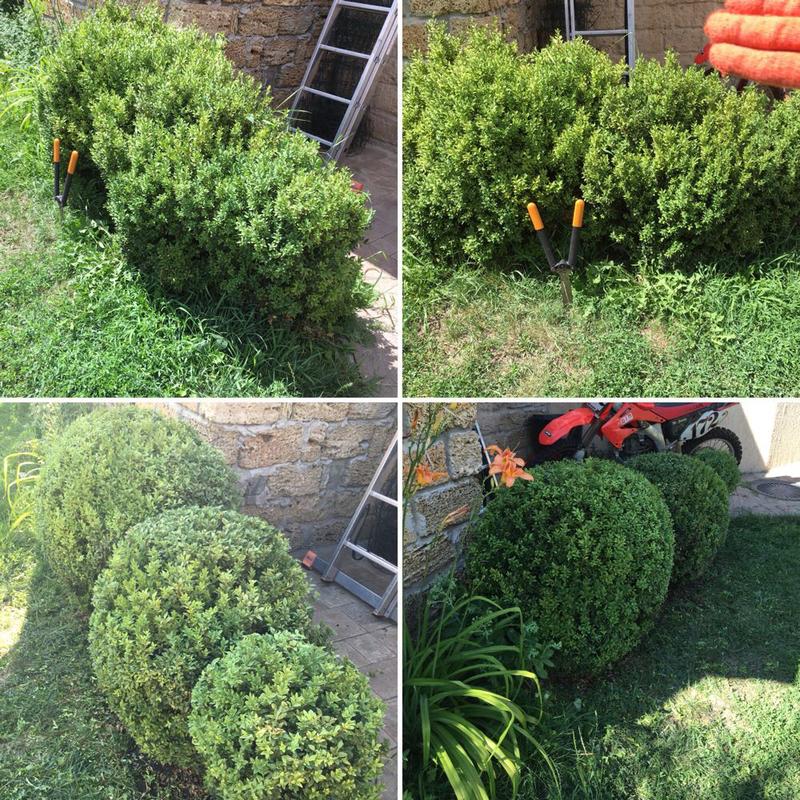 Садовник, озеленитель
