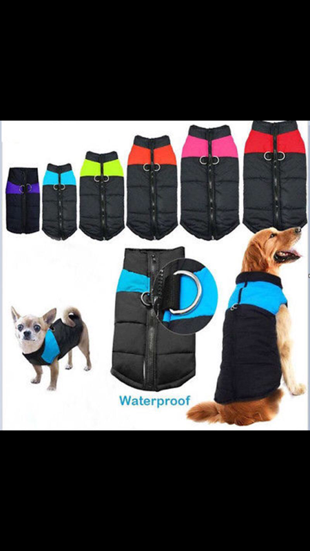 Куртка для собаки - Фото 6