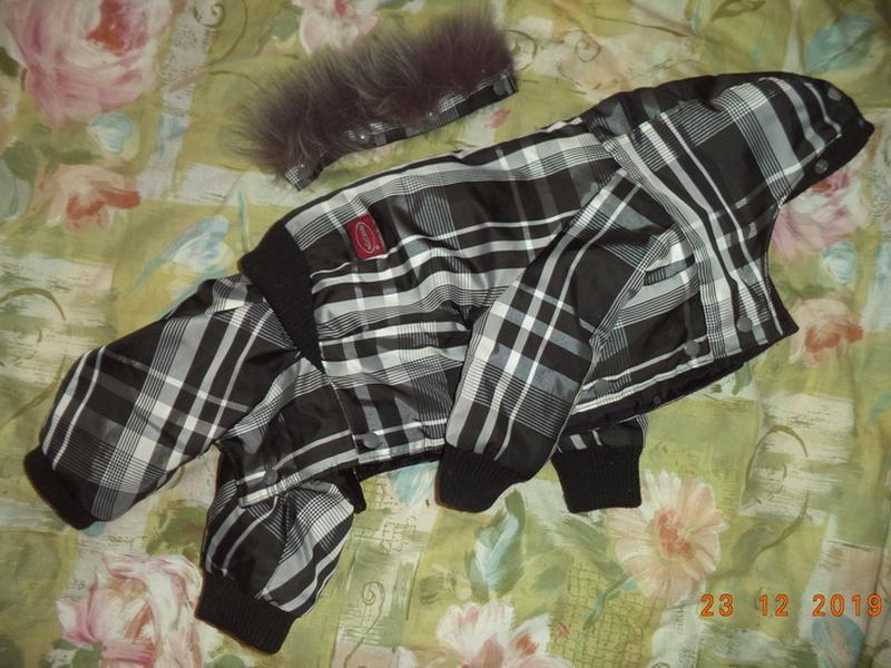 Комбинезон для собачки-девочки, комбенизон, одежда, костюм - Фото 9