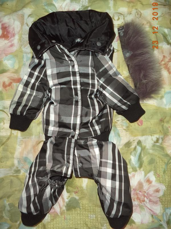 Комбинезон для собачки-девочки, комбенизон, одежда, костюм - Фото 10