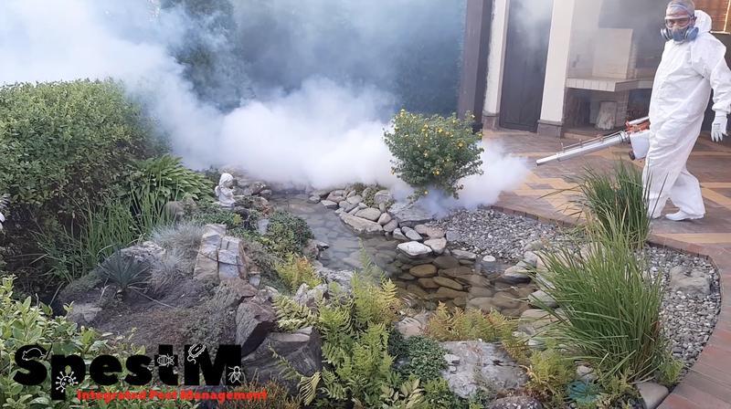 Дезінсекція від комарів - Фото 2