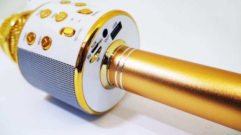 Караоке Wester WS-858 Беспроводной стерео микрофон с динамиком - Фото 4