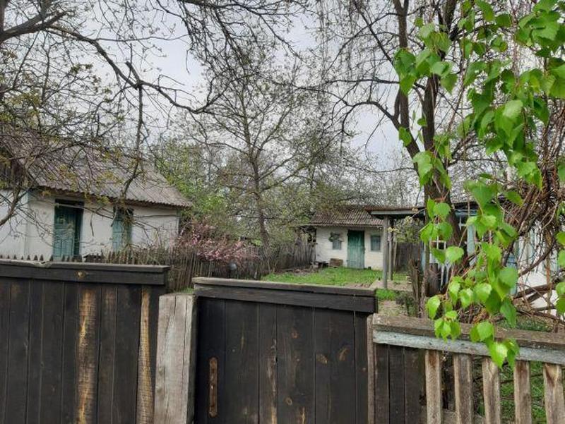 Будинок Хоцьки / дом Хоцки