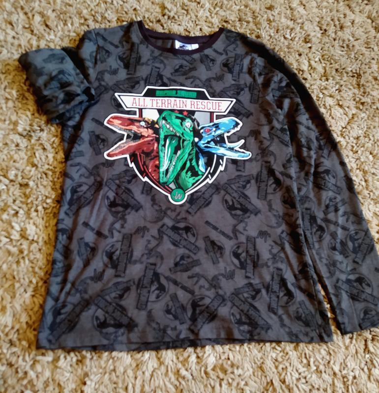 Свитшот кофта реглан свитер світшот динозавр
