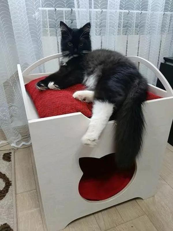 Домик для кота - Фото 3