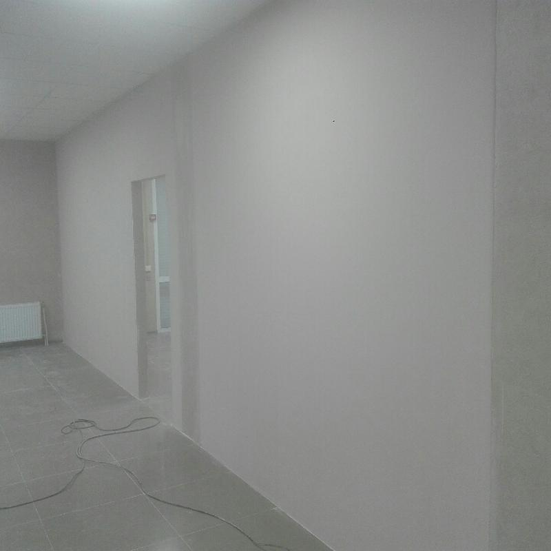 Покраска стен и потолков. - Фото 2