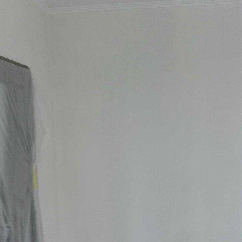 Покраска стен и потолков. - Фото 3