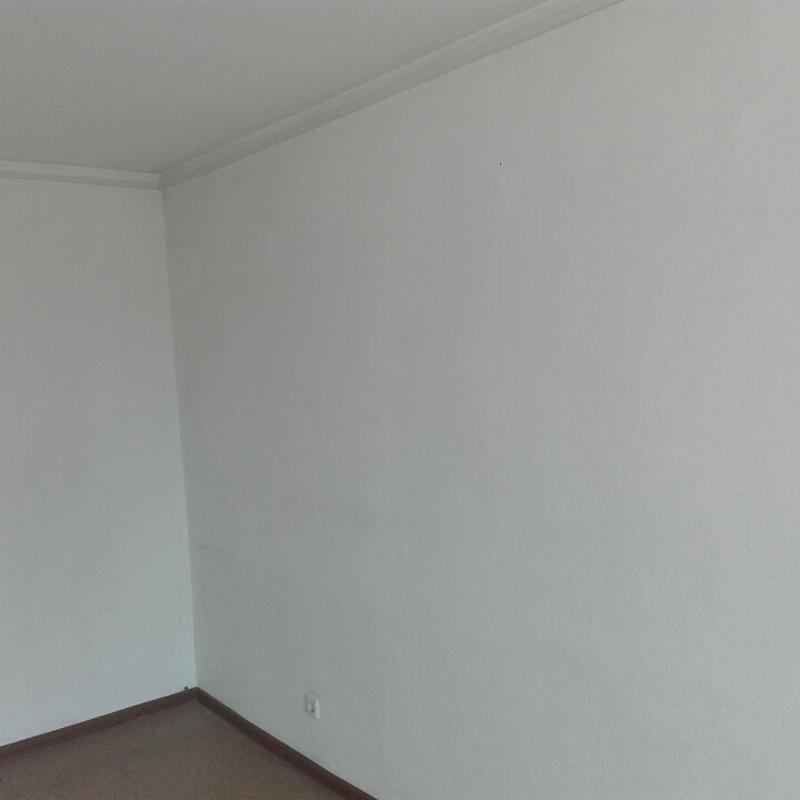Покраска стен и потолков. - Фото 4